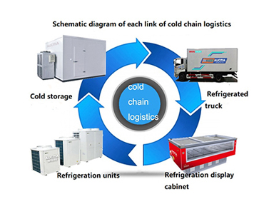 What is the medical cold chain logistic ?